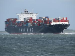 Photo of YM MASCULINITY ship