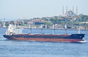 Photo of SEA DOLPHIN C ship