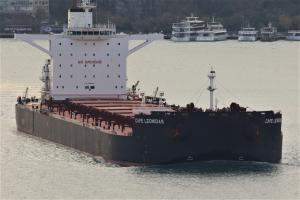 Photo of CAPE LEONIDAS ship