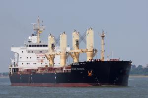 Photo of HONG MERIT ship