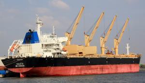 Photo of ANOGYRA ship