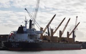Photo of PAROS SEAS ship
