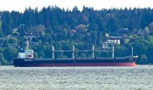 Photo of EFFICIENCY OL ship