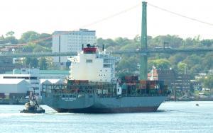 Photo of BREVIK BRIDGE ship