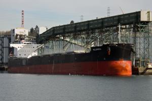 Photo of VELSHEDA ship