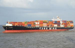Photo of YM EVOLUTION ship