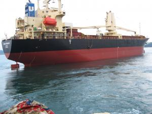 Photo of BUNGO PRINCESS ship