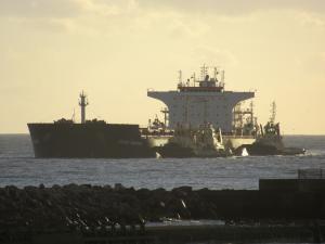Photo of TRANS SHANGHAI ship