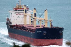 Photo of BELASITZA ship