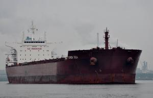Photo of TONDA SEA ship