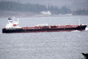Photo of BUNGA LOTUS ship