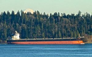 Photo of PADMINI ship