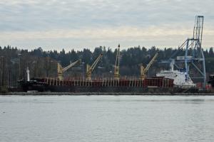 Photo of ASIA PEARL VI ship