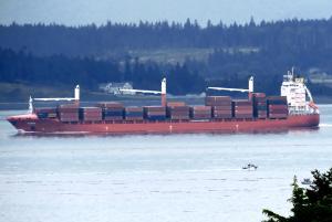 Photo of BARDU ship