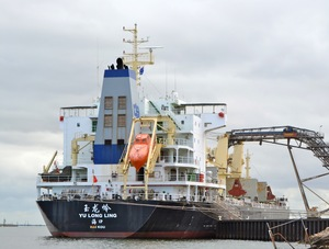 Photo of PENGXIN599 ship