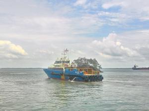 Photo of PEACOCK TIGA ship