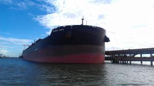 Photo of WUGANG CAIFU ship