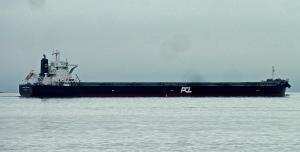 Photo of JUBILANT TREASURE ship