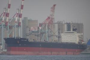 Photo of BULK ARIES ship
