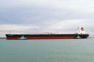 Photo of PHOENIX VIGOR ship
