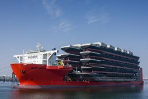 Photo of BJ BLUE MARLIN ship