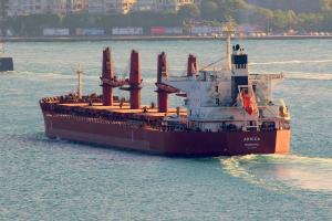 Photo of ARNICA ship