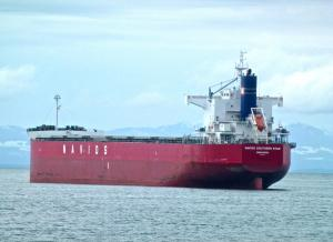 Photo of NAVIOS SOUTHERN STAR ship