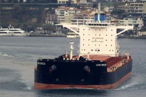 Photo of CAPE BREEZE ship