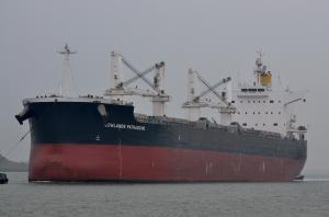 Photo of LOWLANDS PATRASCHE ship