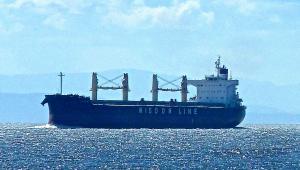 Photo of AMIS LEADER ship