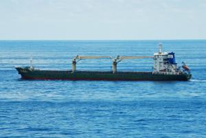 Photo of BLUE EMPEROR 5 ship