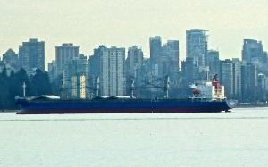 Photo of ASAHI BULKER ship