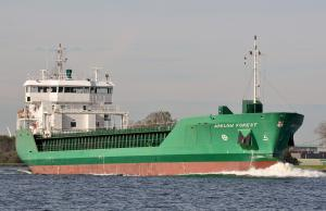 Photo of ARKLOW FOREST ship