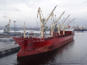 Photo of ORCHARD BULKER ship