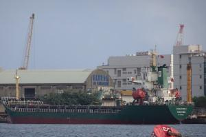Photo of DONG FENG 1 ship
