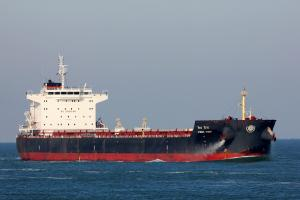 Photo of VISHVA VIJAY ship