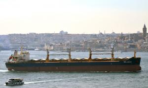 Photo of BALABAN ship