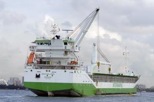 Photo of INDUSTRIAL MORE ship