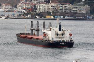 Photo of GALENE M ship