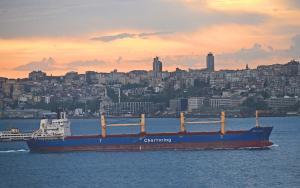 Photo of POLA ILARIA ship