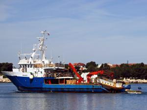Photo of SIN KALI 1 ship