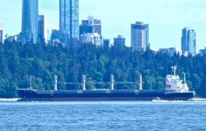 Photo of SAPPHIRE ISLAND ship