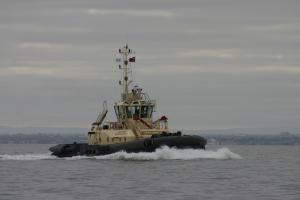 Photo of SVITZER MARYSVILLE ship