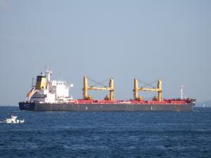 Photo of LACONIC ship