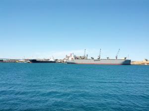 Photo of FOREST SYMPHONY ship