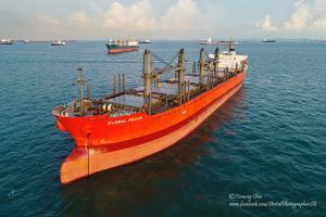 Photo of SHAKESPEARE BAY ship