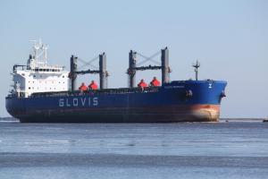 Photo of GLOVIS MERMAID ship