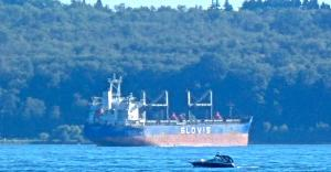 Photo of GLOVIS MARIA ship