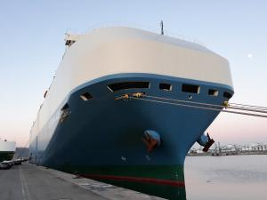 Photo of CATTLEYA ACE ship