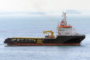 Zdjęcie statku ENA SHOGUN